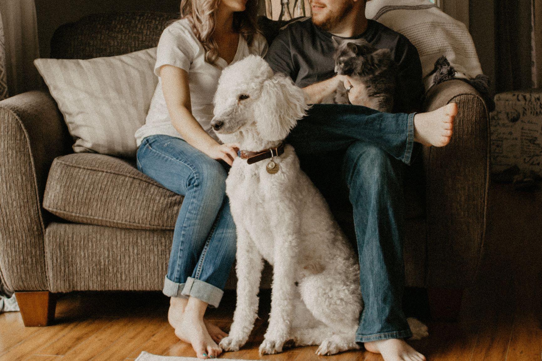 sarandy-westfall-666700-tenants-at-home-with-pets